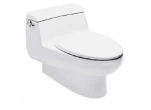 Bệt toilet American Standard 2050WT