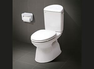 Bệt toilet Inax C 828VRN