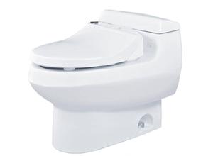 Bệt toilet Toto MS 688E1
