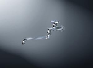 Vòi rửa bát inax LF 12-13
